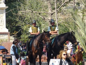 Police on the horses
