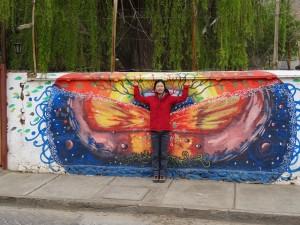 nice wall graffiti in Pisco Elqui