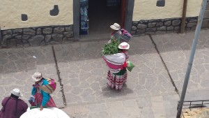 Women with big backpack full of mountain herb