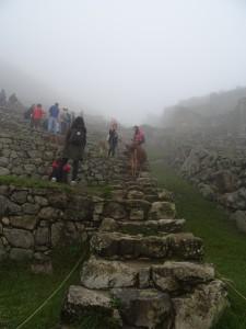 6am, Machu Picchu with clouds & crowds