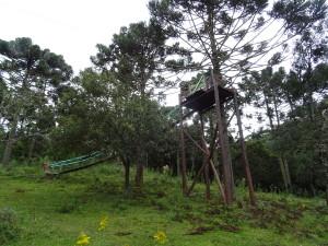 Flying fox from Avencal Falls