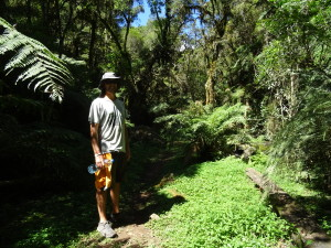 In the beginning of the trail to Casacada neve