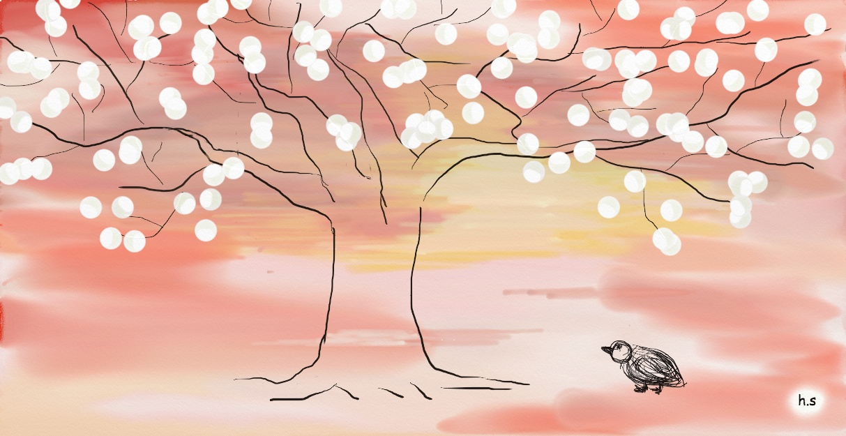 sunset on the tree; 노을나무